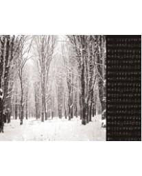 Snowcapped P2384