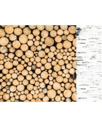 Logs P2402