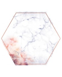 Hexagon PS520