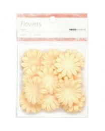 Cream paper flowers - medium