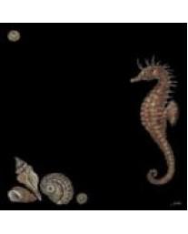 Seahorse on black
