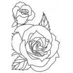 Sketched Rose embossing folder