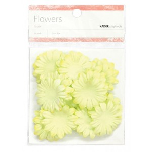 Lime paper flowers - medium