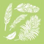 Feathers designer template IT912