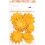 Cimquat paper flowers - mixed