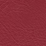 Red Leather Finish 12x12 Album