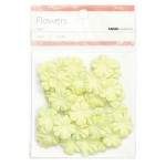 Lime paper flowers - small